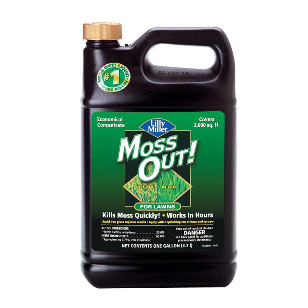 Moss Out! 1 Gal. Moss Out! for Lawns
