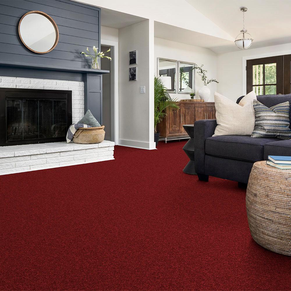Alpine - Color Passion Texture 15 ft. Carpet