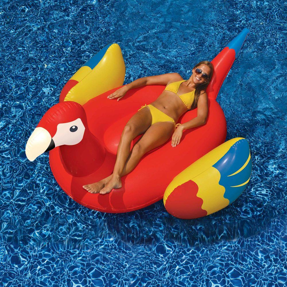 Swimline giant parrot 93 in inflatable ride on pool toy for Pool floats design raises questions