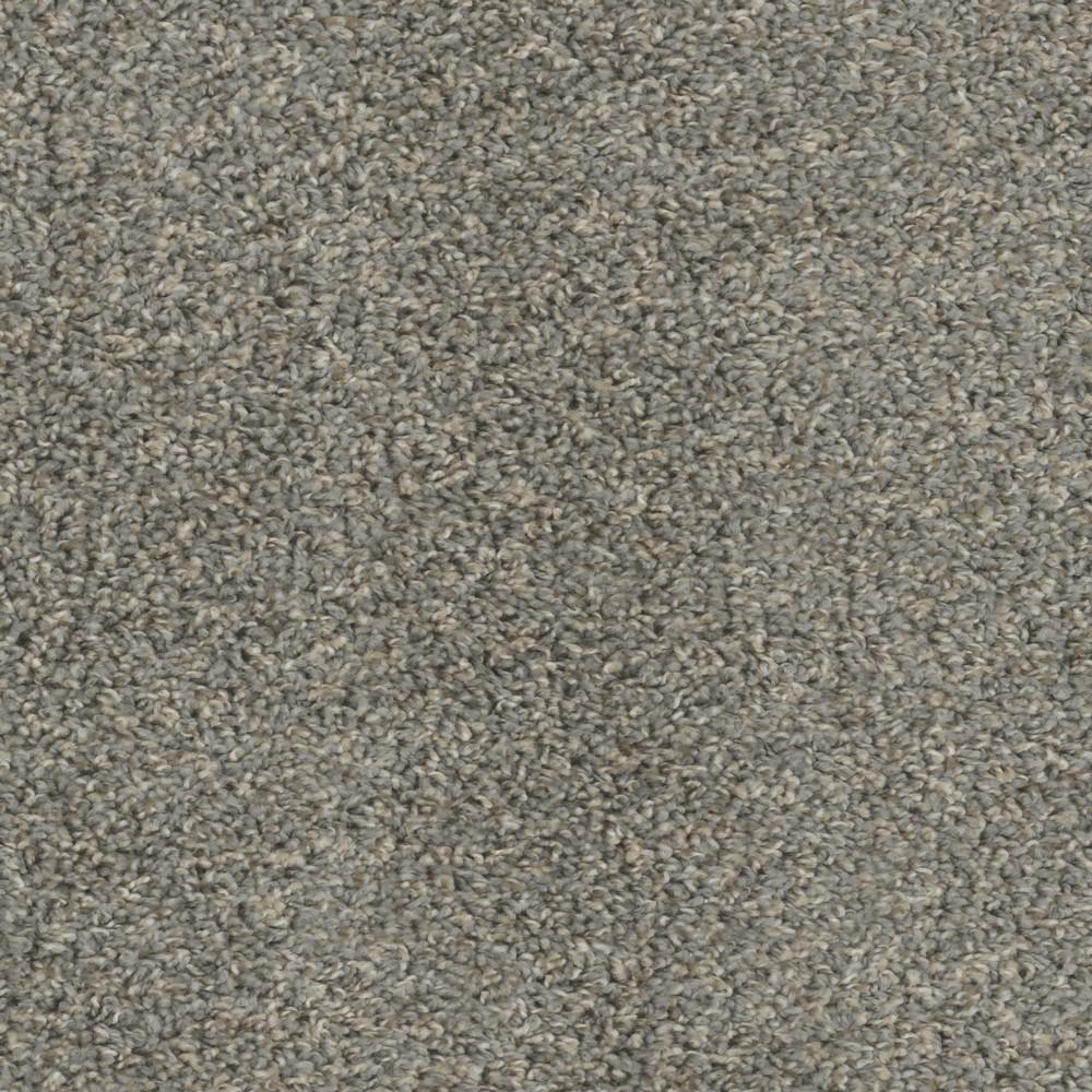 Lucky I - Color Coin Texture 12 ft. Carpet