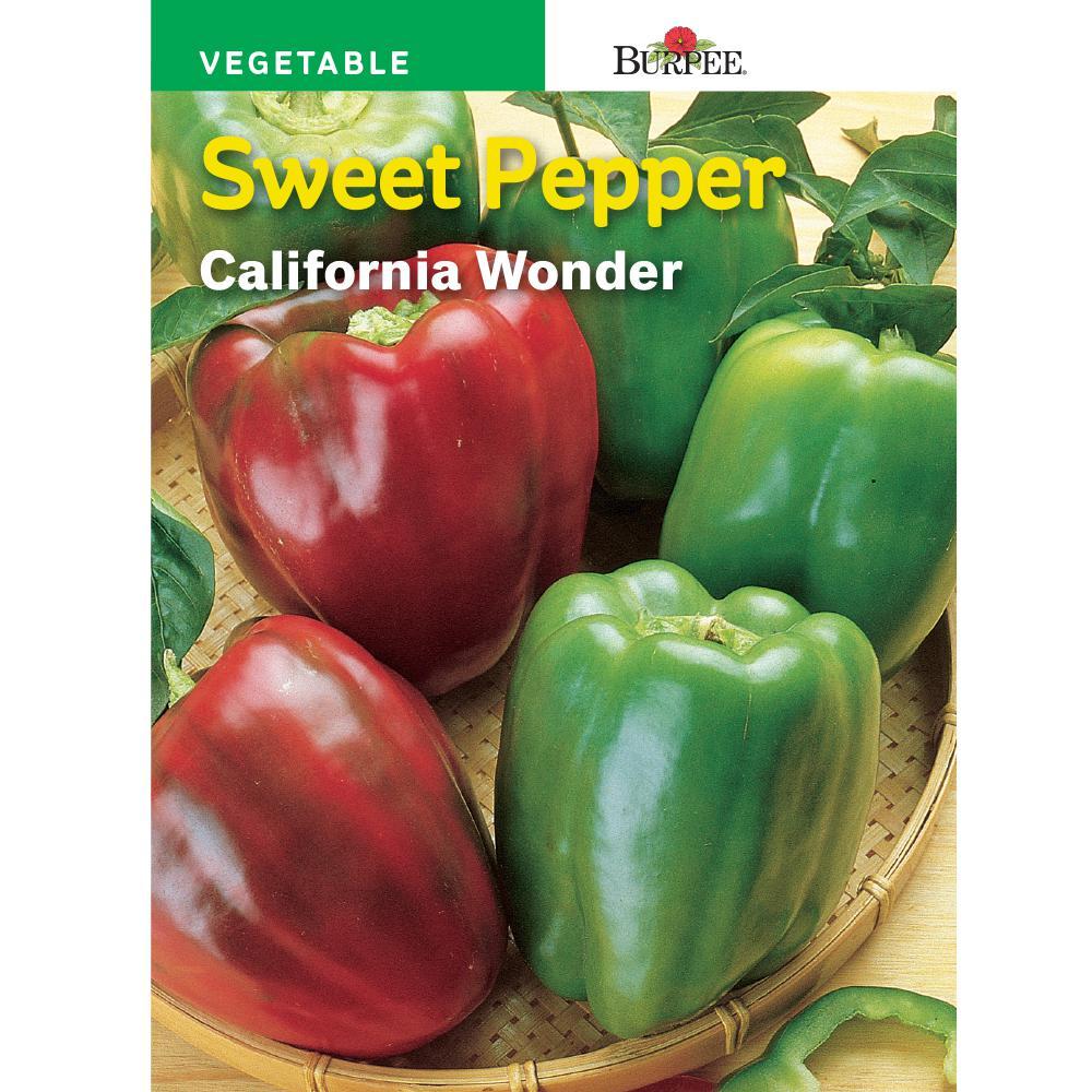 Pepper California Wonder Seed