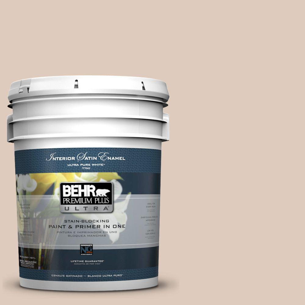 5 gal. #250E-2 Pebbled Courtyard Satin Enamel Interior Paint and Primer