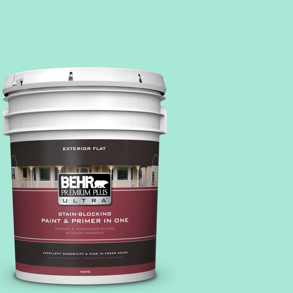 BEHR Premium Plus Ultra 5-gal. #480A-2 Botanical Tint Flat Exterior Paint