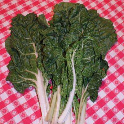 Chard Fordhook Seeds Pack