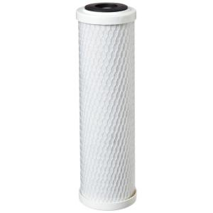 CBC-10 9-3/4 in. x 2-7/8 in. Cyst Reduction Water Filter