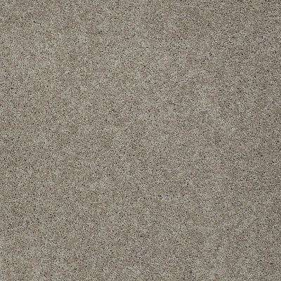 Carpet Sample - Seascape II - Color Country Road 8 in. x 8 in.