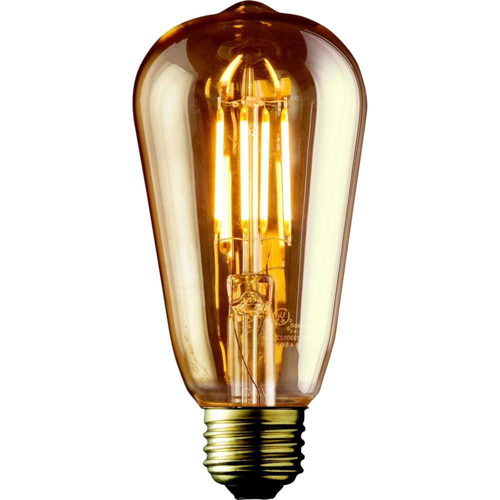 60W Equivalent Warm White ST19 Amber Lens Vintage Edison Dimmable LED Light Bulb (2-Pack)