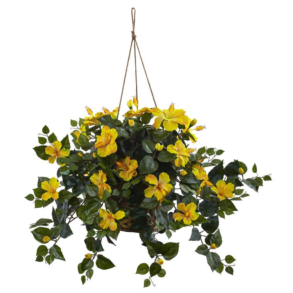 22 in. Hibiscus Hanging Basket