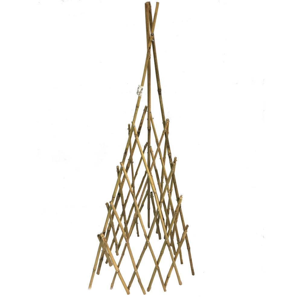 72 in. H Bamboo Teepee Trellis