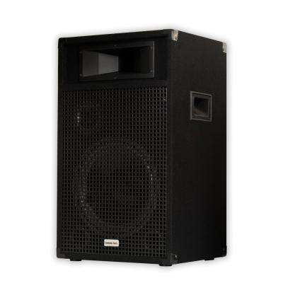 Passive 12 in. Speaker 3-Way DJ PA Karaoke Band Home Monitor