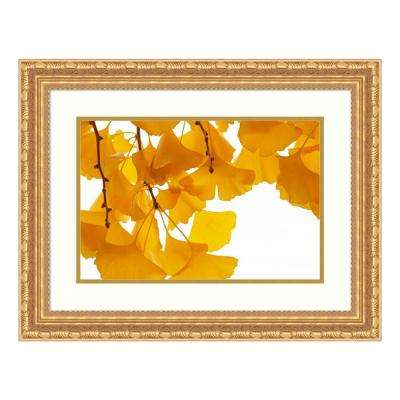 """Ginkgo leaves in autumn, Netherlands"" by Aad Schenk Framed Wall Art"
