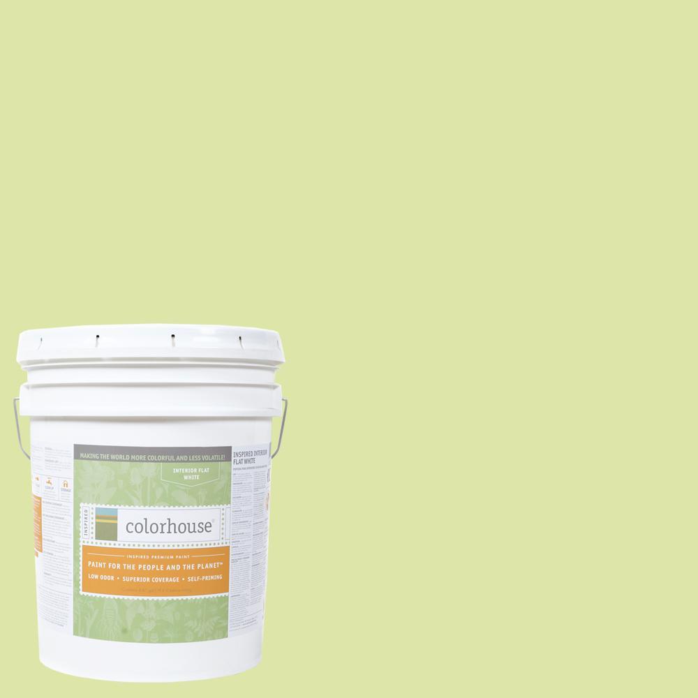 Colorhouse 5 gal. Leaf .07 Flat Interior Paint