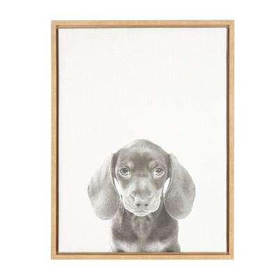 "24 in. x 18 in. ""Daschund Puppy"" by Tai Prints Framed Canvas Wall Art"