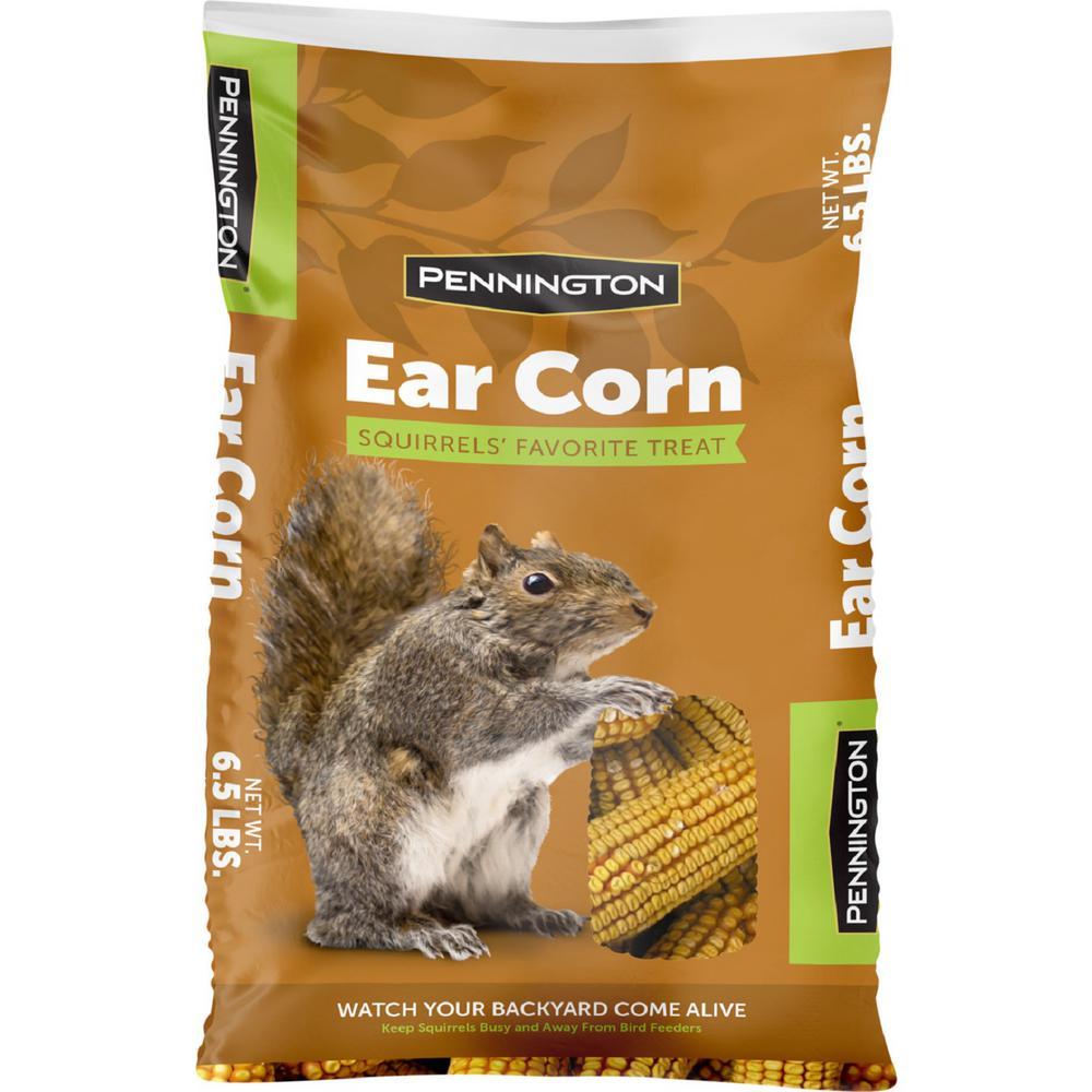 6.5 lbs. Squirrels Ear Corn Cobs