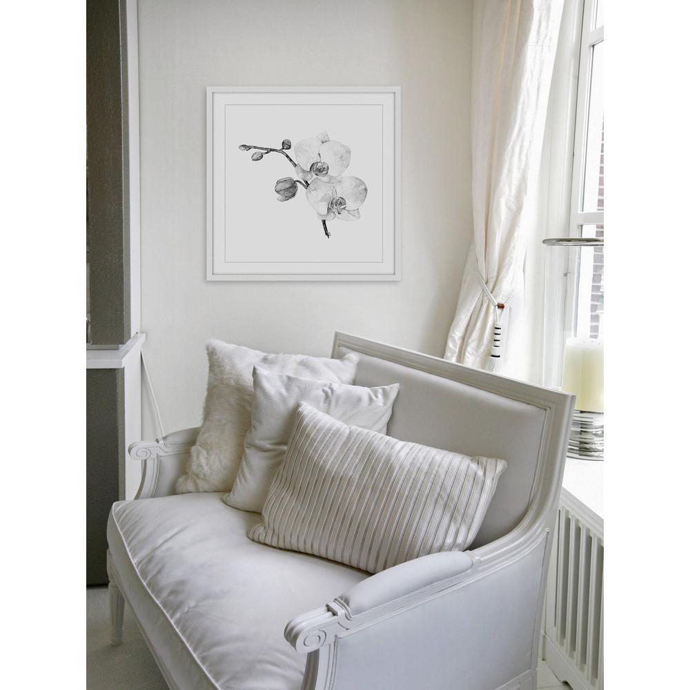 """24 in. H x 24 in. W """"Orchid II"""" by Rachel Byler Framed Printed Wall Art"""