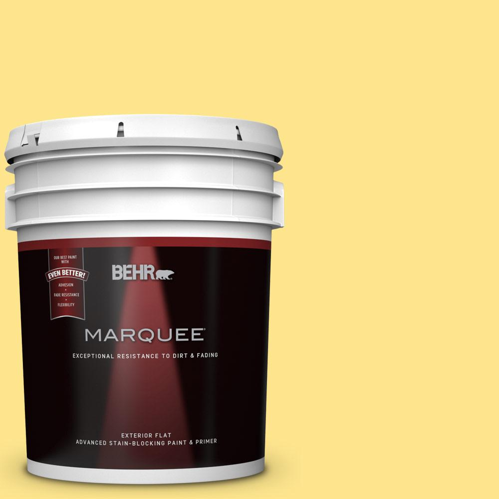 BEHR MARQUEE 5 gal. #370A-3 Bicycle Yellow Flat Exterior Paint and ...