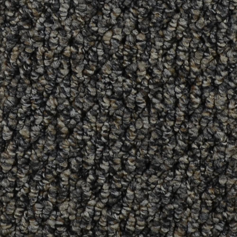 Trafficmaster Carpet Sample Follow Up Color Odessa