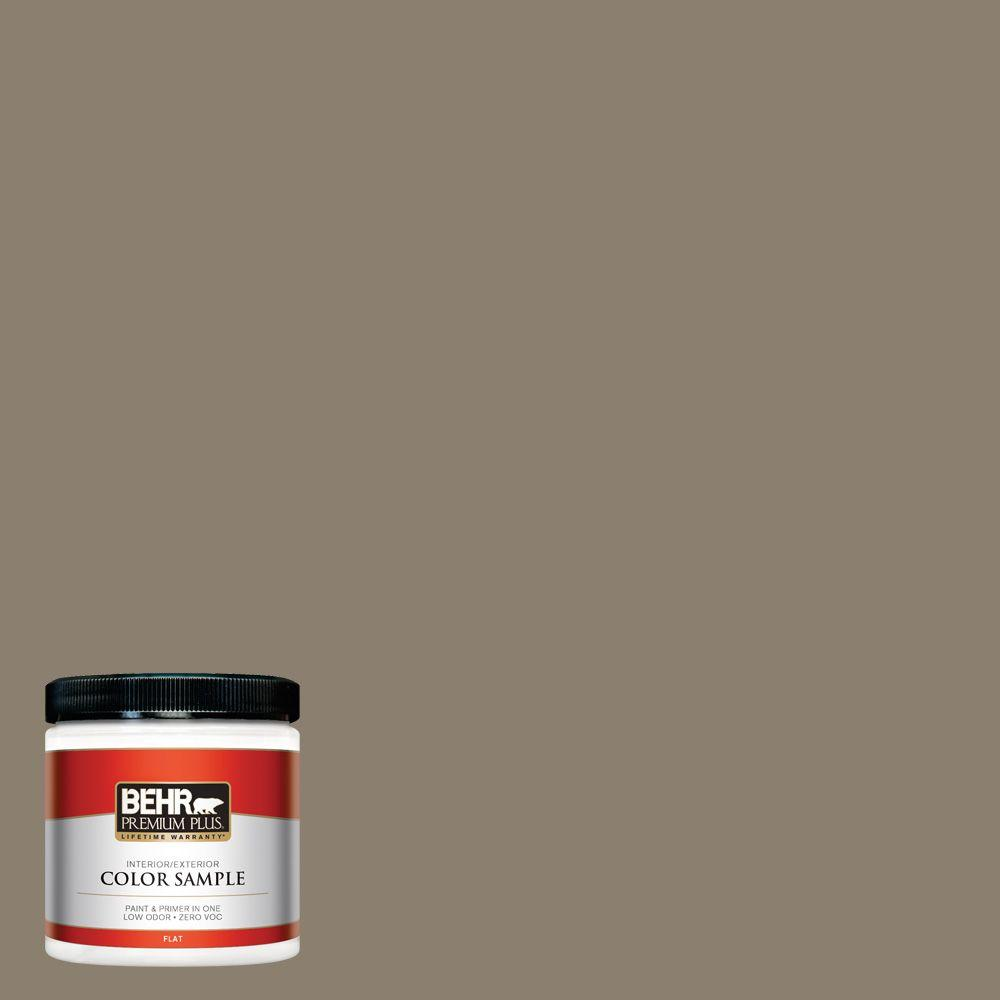 #720D-5 Mocha Accent Interior/Exterior Paint