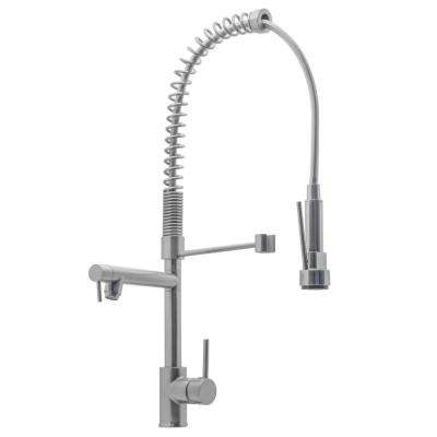 Cassiel Single-Handle Spring Coil Pull-Down Sprayer Kitchen Faucet in Brushed Nickel