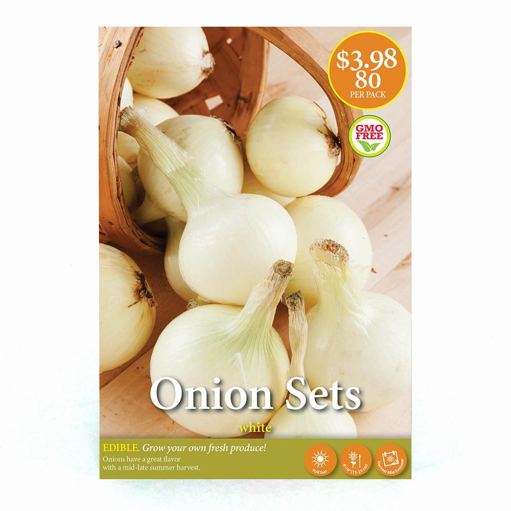 White Onion Set (80-Pack)