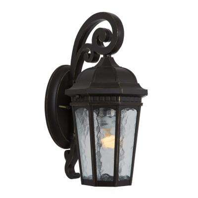 Minarets Lake Collection 1-Light Weathered Bronze Outdoor Wall Mount Lamp