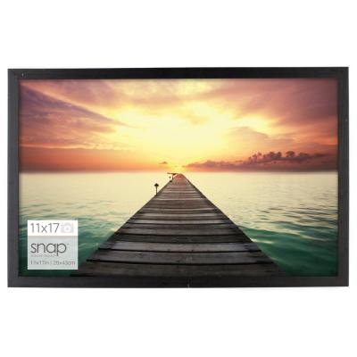 11 in. x 17 in. Poster Picture Frame
