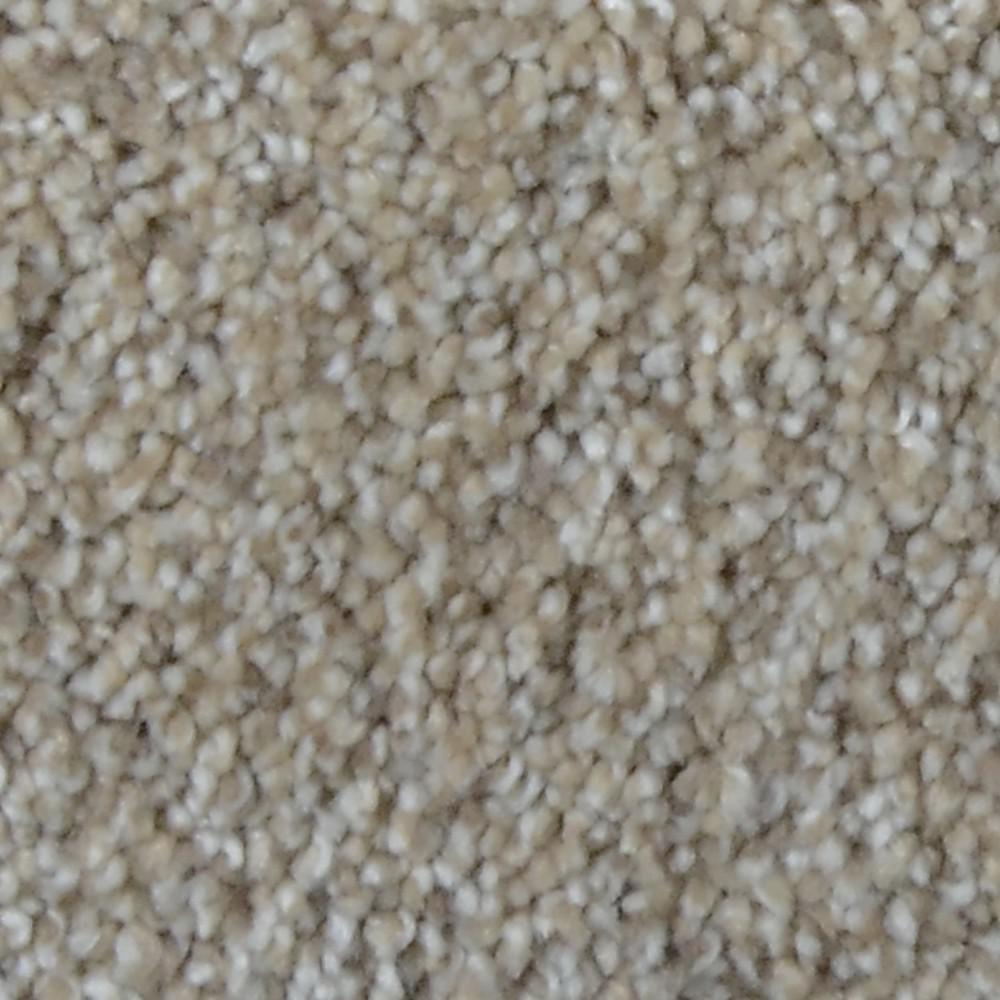Home Decorators Collection Carpet Sample Stargazer