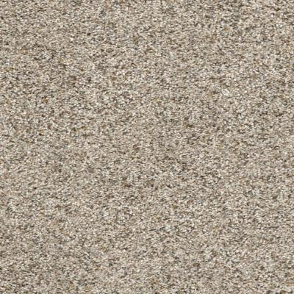 Delight II - Color Frolic Texture 12 ft. Carpet