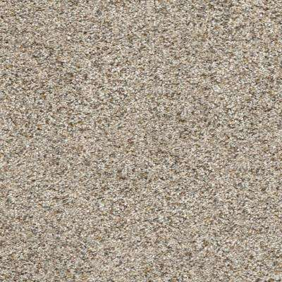 Delight II - Color Frolic Texture 12 ft. Carpet