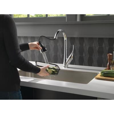 Esque Single-Handle Bar Faucet with Pull-Down Sprayer in Chrome