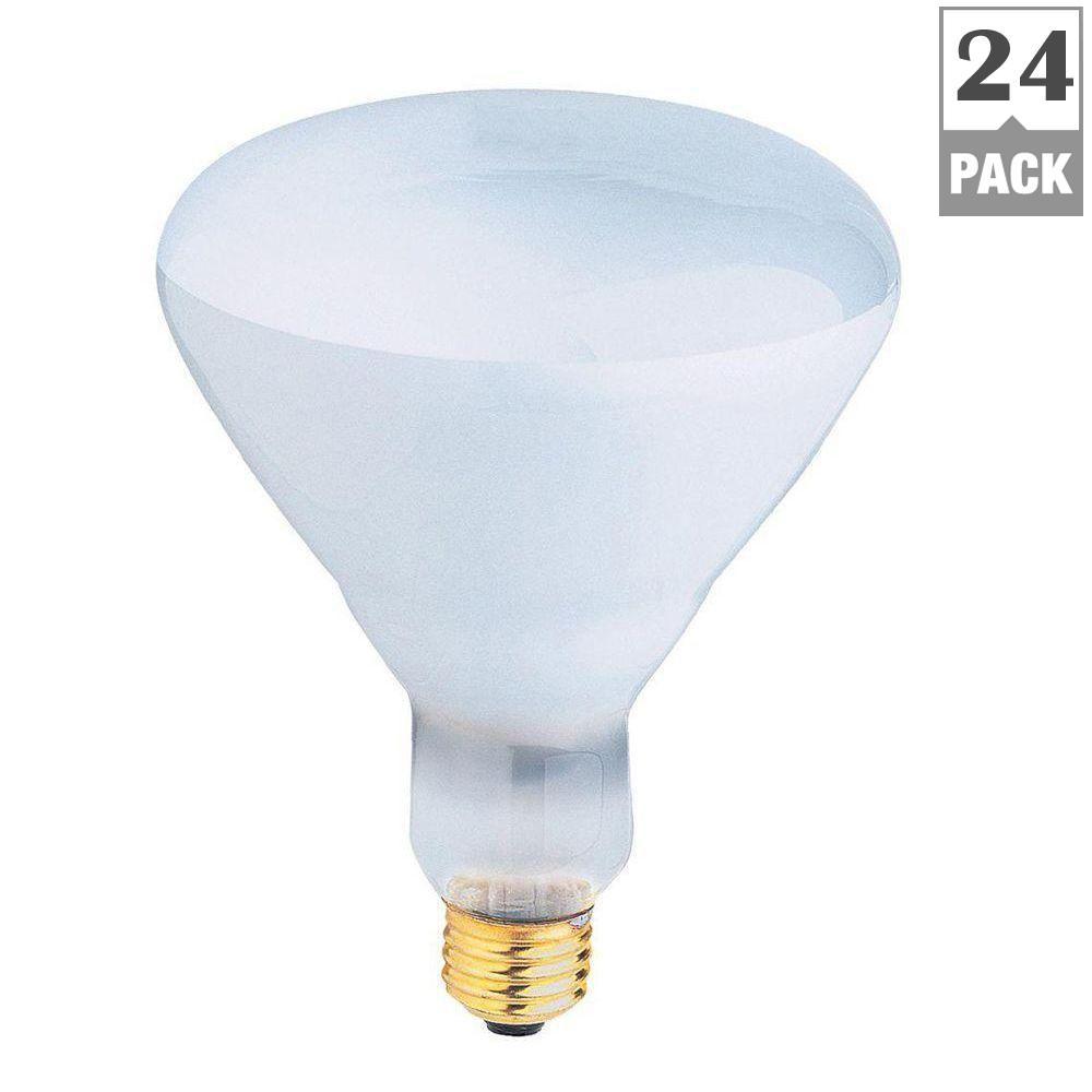feit electric 500 watt incandescent r40 pool and spa flood light bulb 24 pack 500r fl 24 130. Black Bedroom Furniture Sets. Home Design Ideas