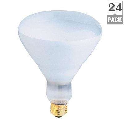500-Watt Incandescent R40 Pool and Spa Flood Light Bulb (24-Pack)