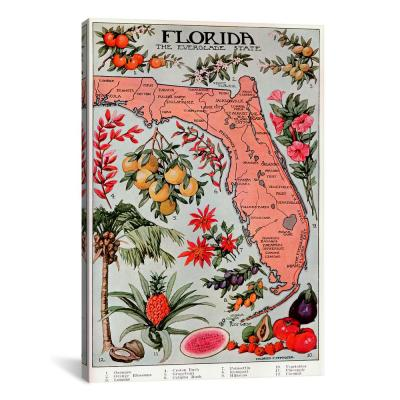"""State Map of Florida (Natural Resources)"" by Vintage Poster Canvas Wall Art"