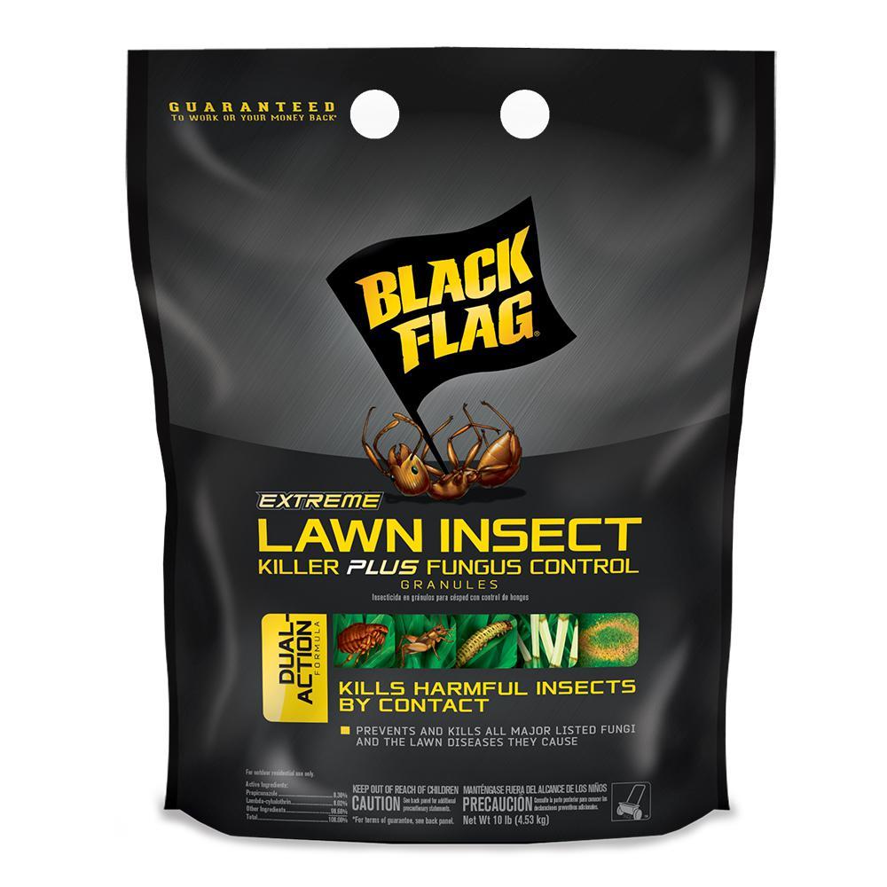Black Flag Extreme 10 lb. Lawn Insect Killer Plus Fungus Control Granules