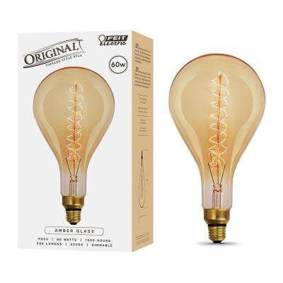 60-Watt Soft White (2200K) PS52 Dimmable Incandescent Vintage Style Large Amber Glass Light Bulb