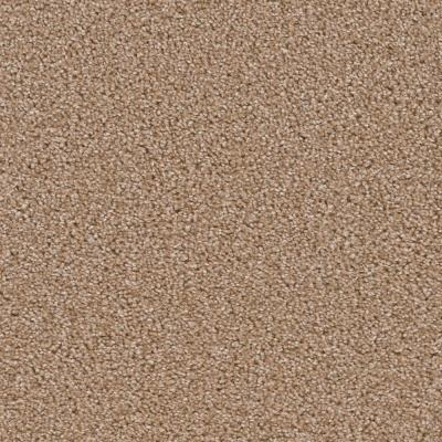 Blazer Candlewood Texture 18 in. x 18 in. Carpet Tile (10 Tiles/Case)