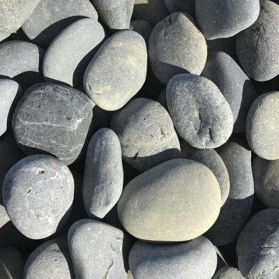 2 in. to 3 in. Black Mexican Beach Pebble (500 lb. Mini Sack)
