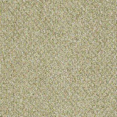 Carpet Sample - Fallbrook - In Color Willow Winds 8 in. x 8 in.