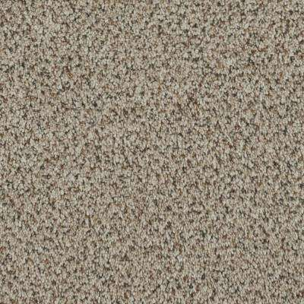 Carpet Sample - Serendipity II - Color Hazelnut Texture 8 in. x 8 in.