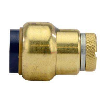 1/2 in. Brass Push-to-Connect Cap with Drain