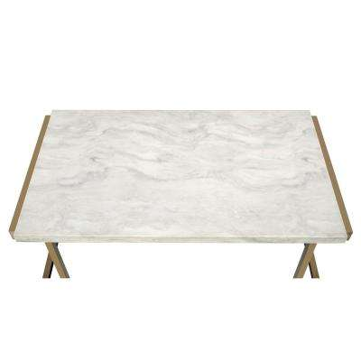 Boice II Coffee Table in Faux Marble and Champagne