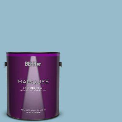 1 gal. #S480-3 Sydney Harbour One-Coat Hide Ceiling Flat Interior Paint and Primer in One