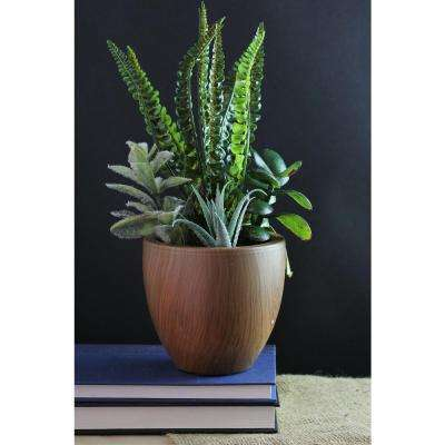 12 in. Artificial Succulents and Fern Plants in Pot