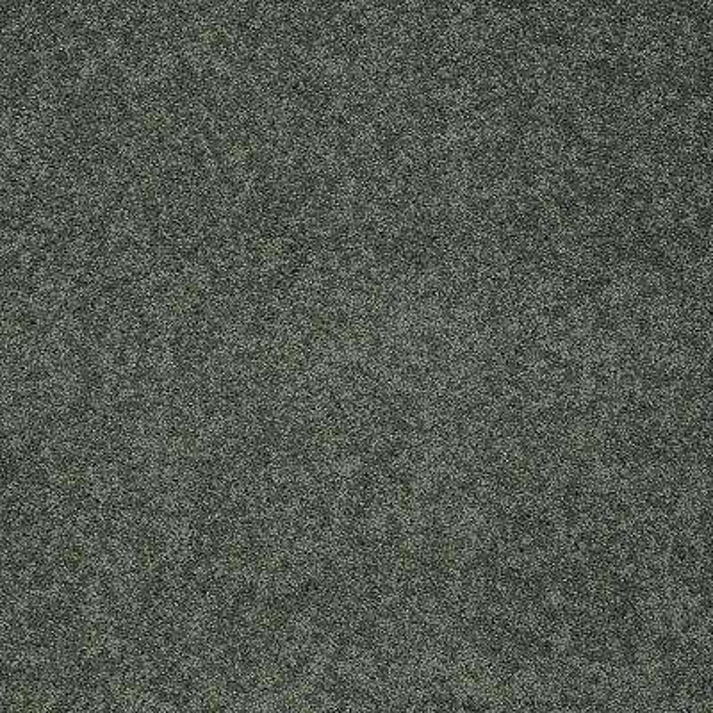 Carpet Sample - Seascape II - Color Mistle Toe 8 in. x 8 in.