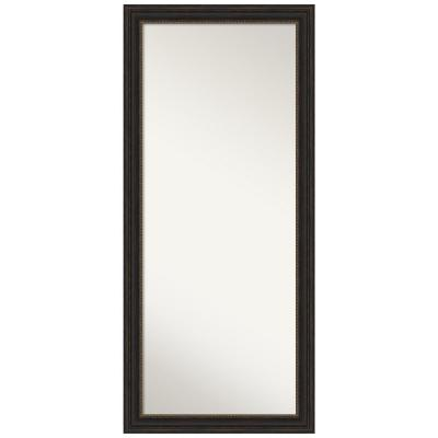 Accent 29 in. x 65 in. Bronze Decorative Full Length Floor Leaner Mirror
