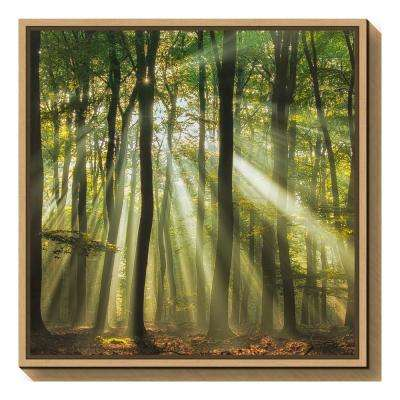 """Sunny start to the day"" by Piet Haaksma Framed Canvas Wall Art"