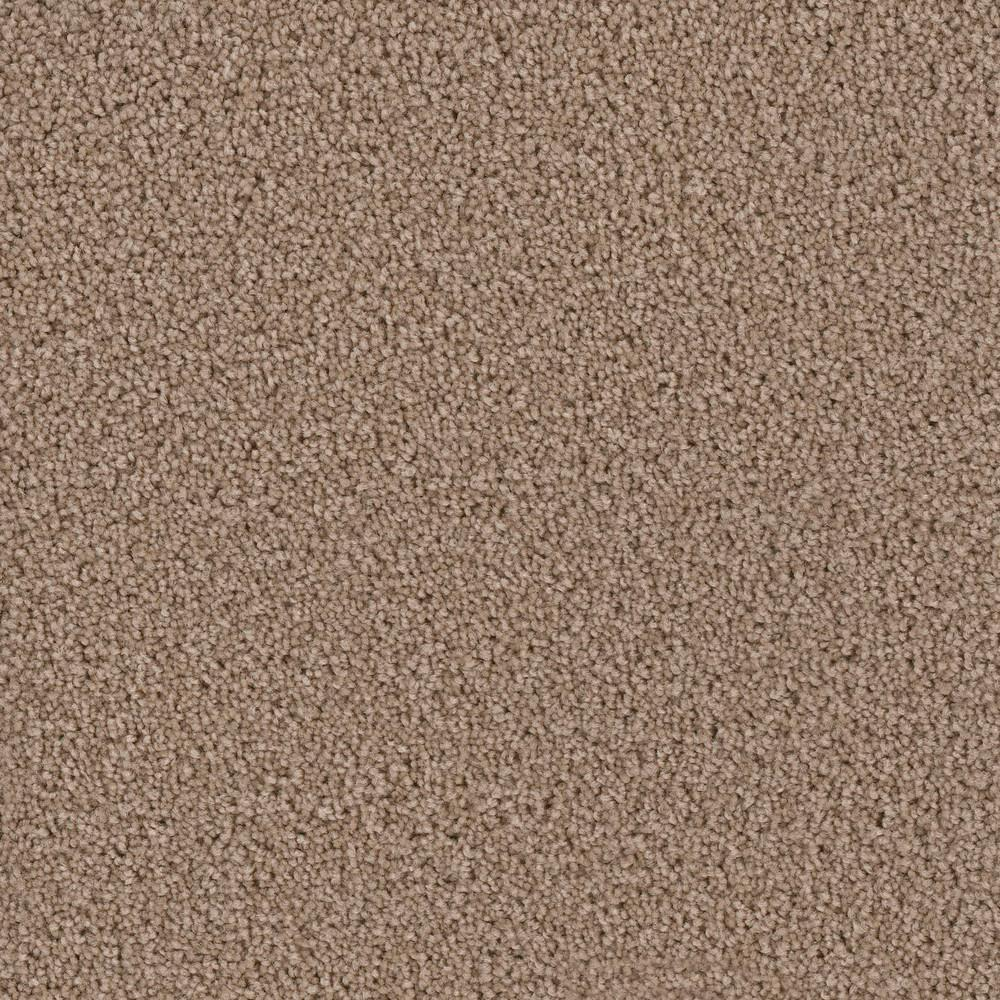 Carpet Sample - Kalamazoo I - Color Windham Texture 8 in. x 8 in.