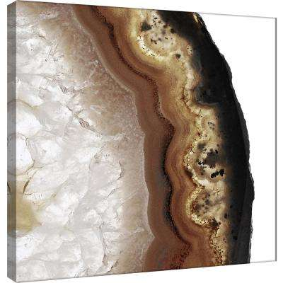 15 in. x 15 in. ''Earth Agate C'' Printed Canvas Wall Art