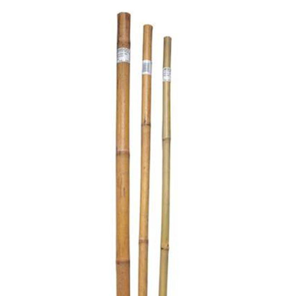 6 ft. x 1 in. Super Pole (100-Pieces per Pack)