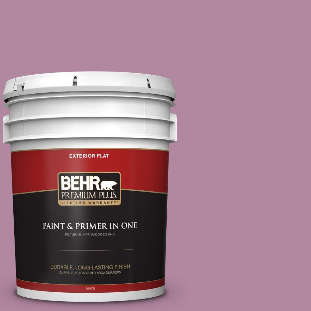 BEHR Premium Plus 5-gal. #690D-5 Winsome Rose Flat Exterior Paint